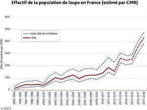 Effectif de la population de loups en France (estimé par CMR).