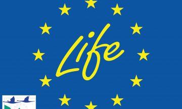 Des nouvelles du projet LIFE WOLFALPS EU