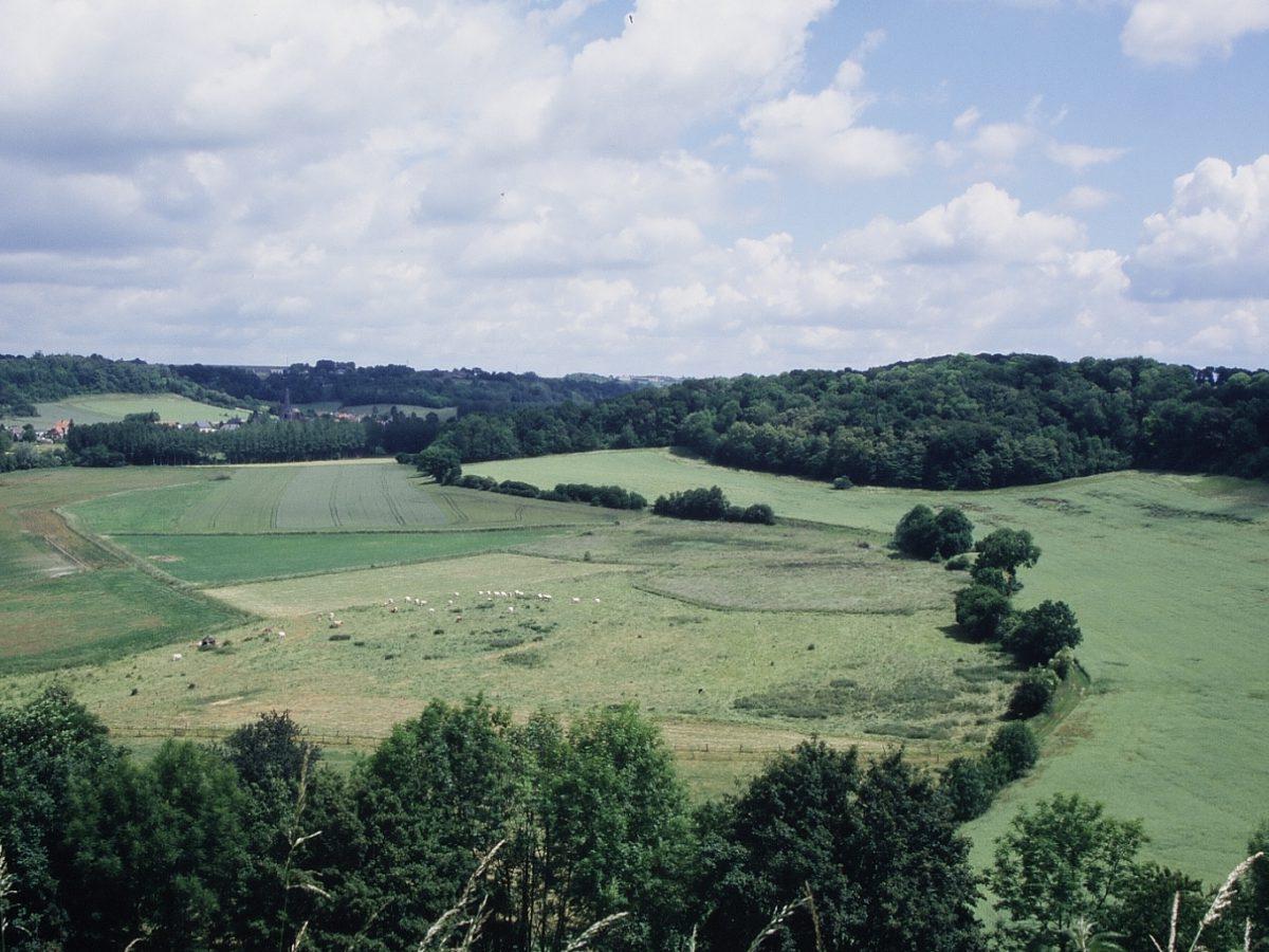 Hauts-de France et Normandie : l'ONCFS veille via son Réseau « Sentinelle »