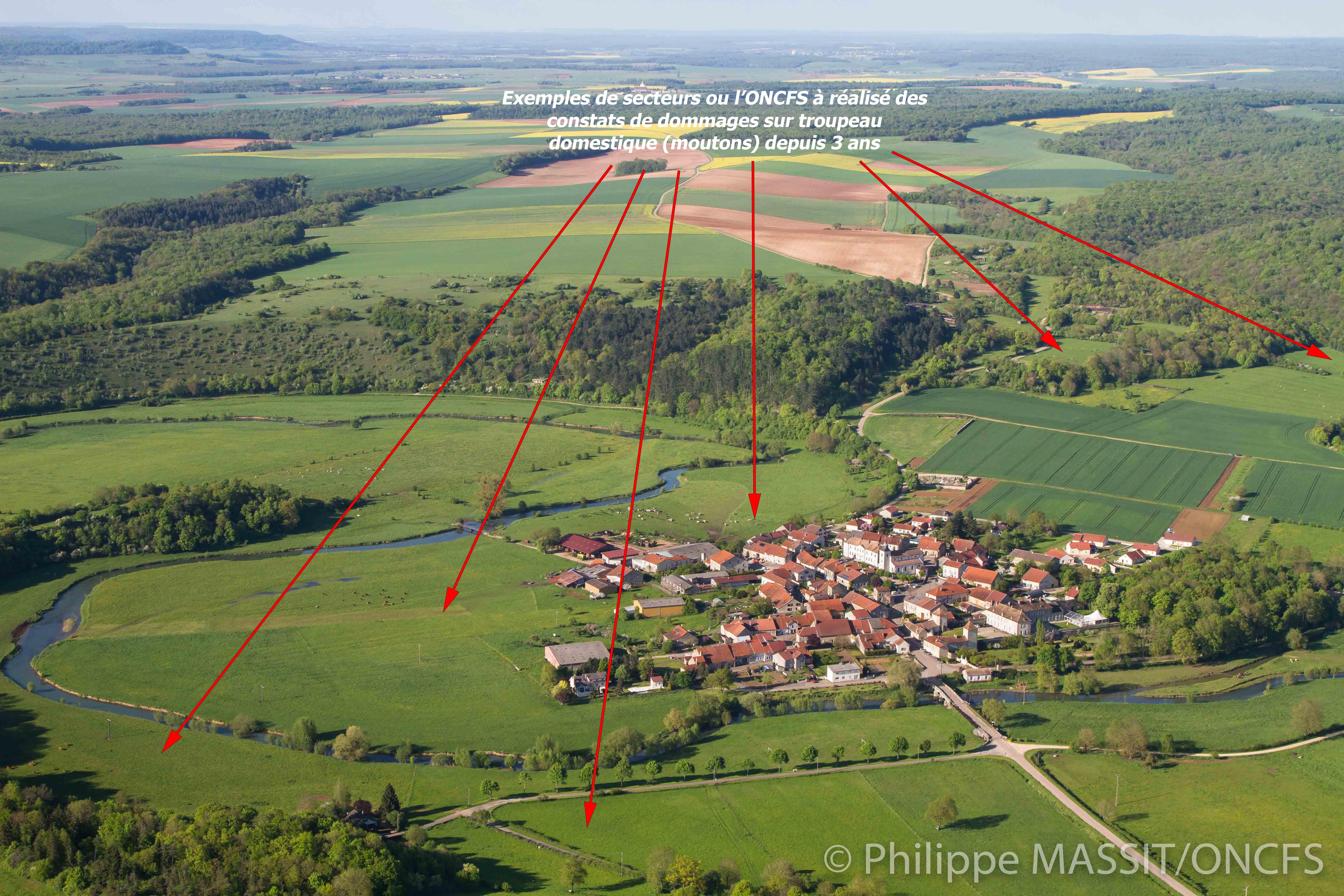 Secteurs à proximité du village d'Autigny-la-Tour où l'ONCFS a réalisé depuis 3 ans des constats de dommages sur troupeaux domestiques