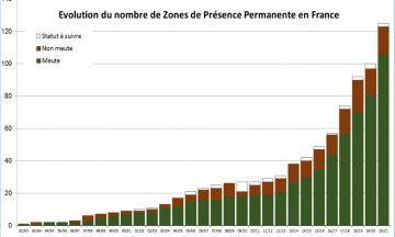 Bilan du suivi hivernal de la population de loups / Hiver 2020-2021