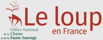 Le loup en France