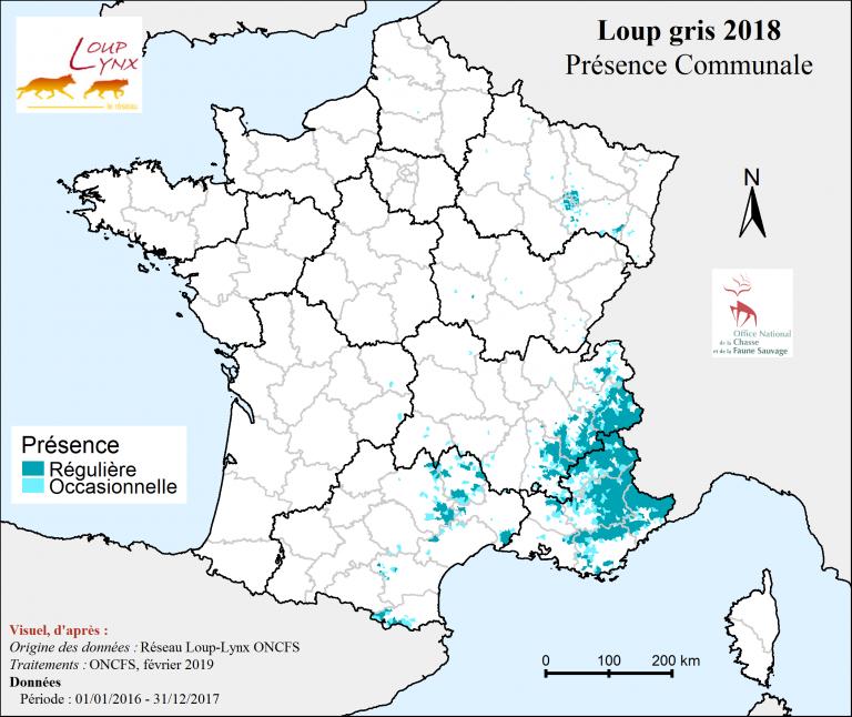 Présence communale du loup gris en France 2018.