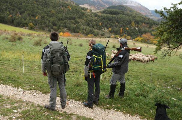 Rediffusion du film documentaire « Avec les hommes de la Brigade Loup »
